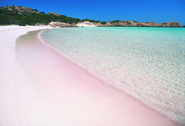 wisata-pantai-pink-lombok
