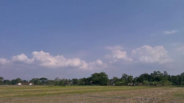 Pemandangan Dusun Kregolan