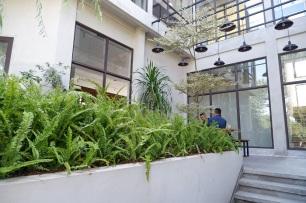 Tanaman di Estuary Cafe