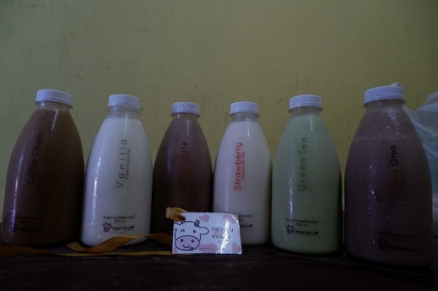 Kumpulan Rasa Mamicu Milk