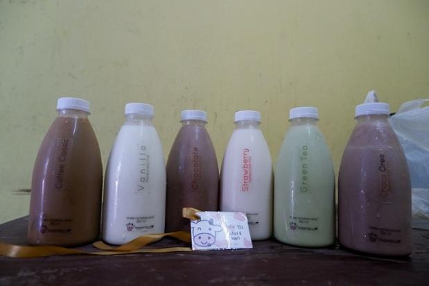 Varian Rasa Mamicu Milk